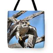 A Prairie Falcon Against A Blue Sky Tote Bag