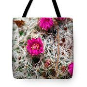 A Prickly Bed Tote Bag