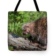 A Prickly Situation Tote Bag