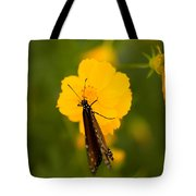 A Queen Butterfly At The Lincoln Tote Bag