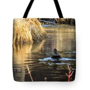 A Quiet Morning Swim Tote Bag