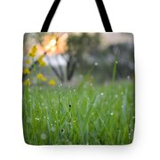 A Rabbits View Tote Bag