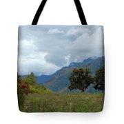 A Rainy Day In The Mountains Of Ecuador Tote Bag