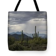 A Rainy Desert Afternoon  Tote Bag