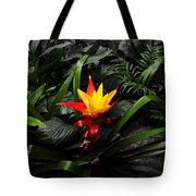 A Rare Beauty Tote Bag