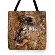 A Red Tailed Hawk  Tote Bag