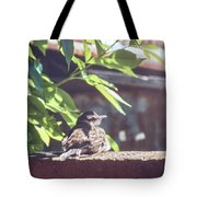 A Rest Before The Flight Tote Bag