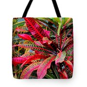 A Rich Composition Tote Bag