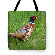 A Ring-necked Pheasant Walking In Tall Grass Tote Bag