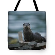A River Otter Perched On Planks Of Wood Tote Bag