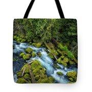 A River's Path Tote Bag