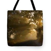 A Road Less Traveled Tote Bag