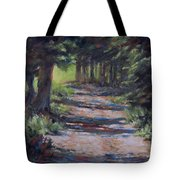 A Road Less Travelled Tote Bag by Mia DeLode