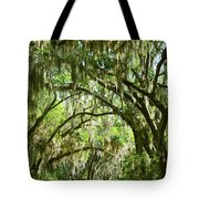 A Road To The Inside Just Outside Of Savannah Tote Bag