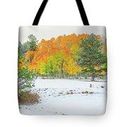 A Roadside Neve  Tote Bag