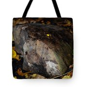 A Rock Amongst Decay Tote Bag