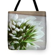 A Rock And A Soft Place Tote Bag