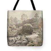 A Rocky Stream Tote Bag