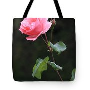 A Rose For Rodin Tote Bag