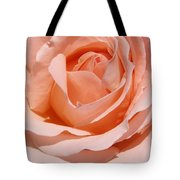 A Rose Is A Rose By Any  Name .... Tote Bag