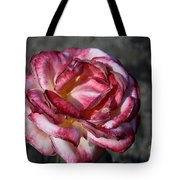 A Rose Of Different Shades Of Red Tote Bag