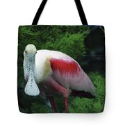 A Roseate Spoonbill Along The Gulf Tote Bag