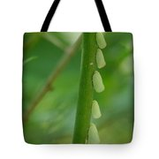 A Row Of Hoppers Tote Bag