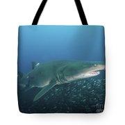 A Sand Tiger Shark Above A School Tote Bag
