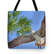 A Seagull Flyby Tote Bag