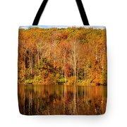 A Season Of Reflection Tote Bag