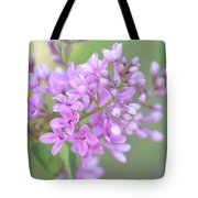 A Shade Of Purple, A Shade Of Spring Tote Bag