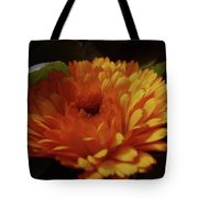 A Shadowed Blossom  Tote Bag