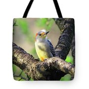A Shady Woodland Bird Red-bellied Woodpecker Tote Bag