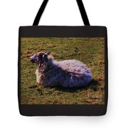 A Sheep In Wales Tote Bag