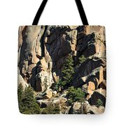 A Sheltered Place Tote Bag
