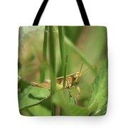A Shy Grasshopper Tote Bag