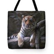 A Siberian Tiger At Omahas Henry Doorly Tote Bag
