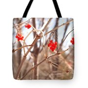 A Sign Of Spring Tote Bag