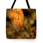 A Single Leaf In The Late Sun Tote Bag