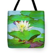A Single Water Lily Blossom Tote Bag