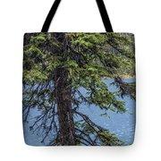 A Slice Of Pine Tote Bag