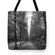 A Slice Of The Sky Tote Bag