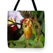 A Slipper In The Shadows Tote Bag