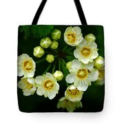 A Small Circle Of Friends Tote Bag