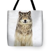 A Smile For You.. Tote Bag