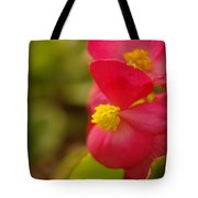 A Soft Red Flower Tote Bag