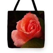 A Soft Rose  Tote Bag