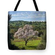 A Solitary Almond Tree Tote Bag