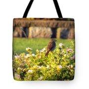 A Sparrow Surveys Tote Bag