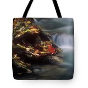 A Special Place Tote Bag